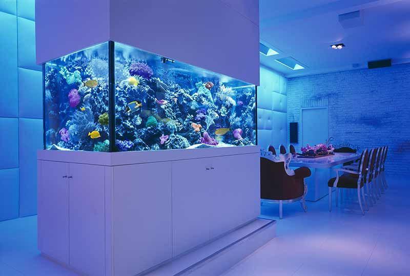 aquarium volume calculator