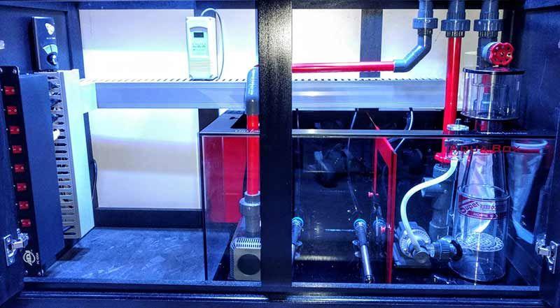 reef tank plumbing guide
