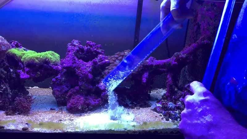 Fish Tank Cleaner