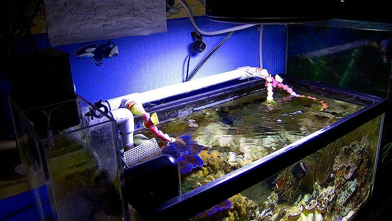 Aquarium Return Plumbing
